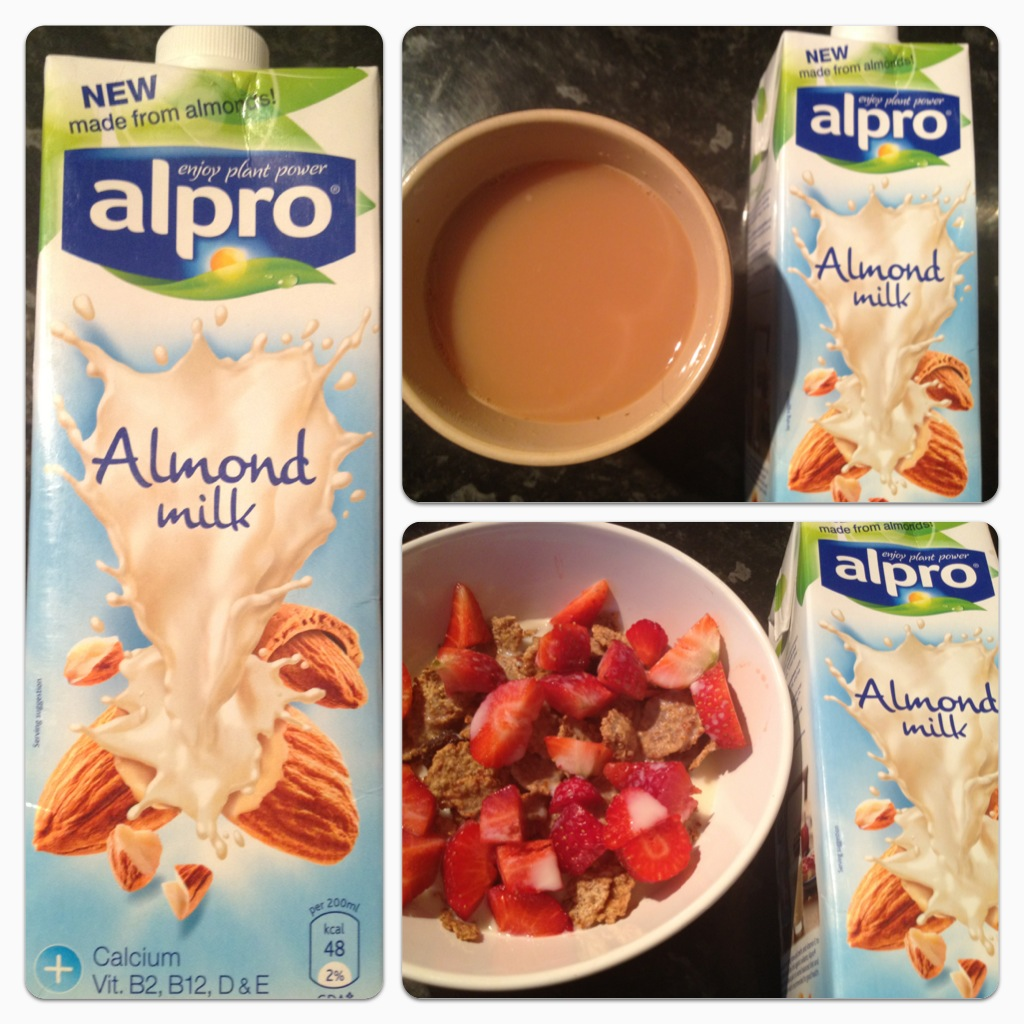 Review alpro milk and desserts lilinha angel 39 s world for Alpro soja cuisine