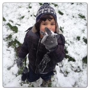 Tasting Snowballs