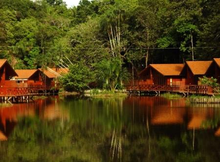 Amazon Rainforest Survival Tour