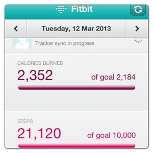 Fitbit Zip Daily Tracker